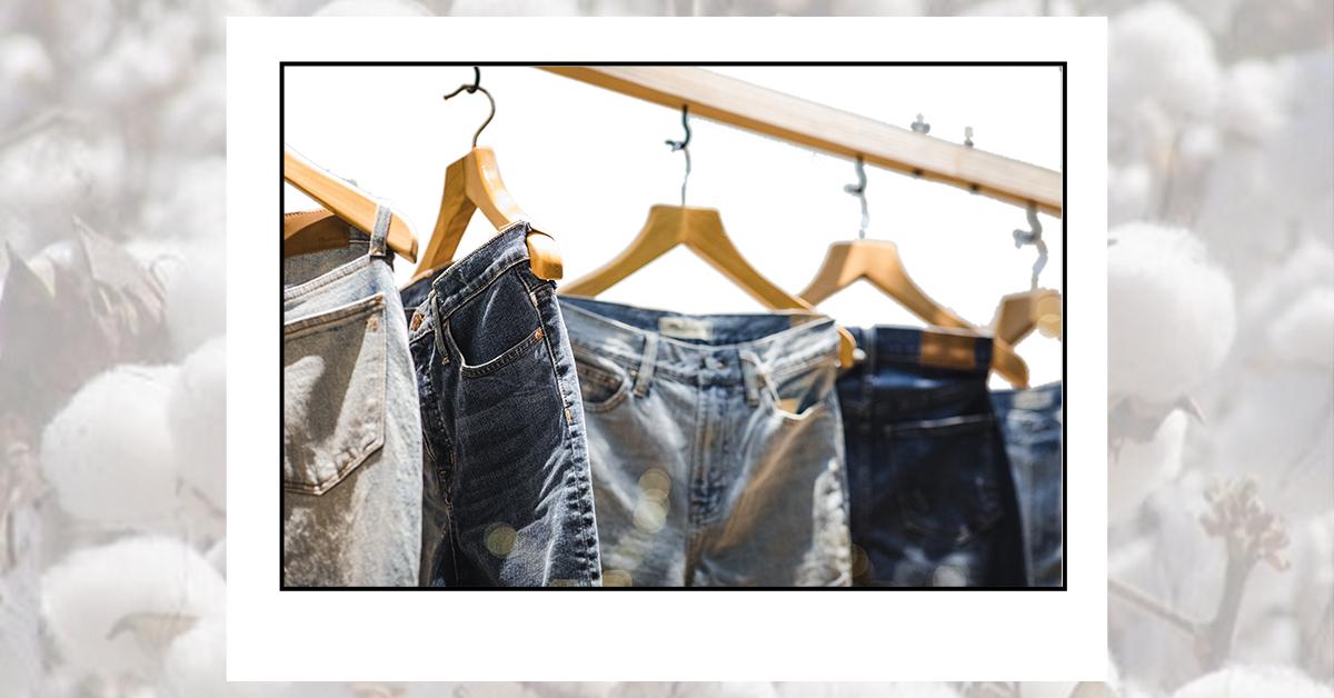 Do algodão colhido à peça de roupa: como é produzido uma calça jeans?